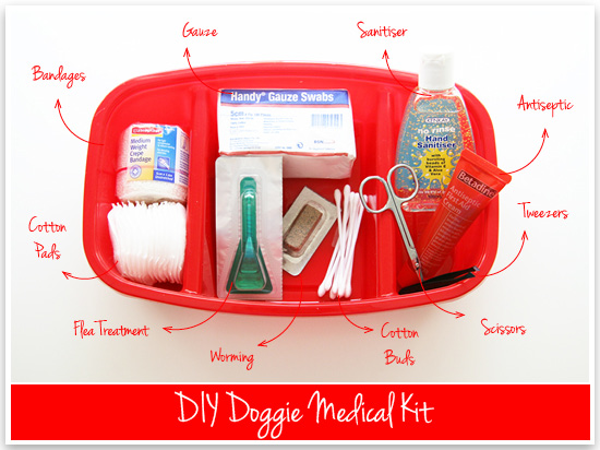 Dog First Aid Kit Pretty Fluffy Treats a la Bark
