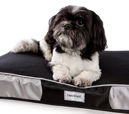 Memory foam dog bed Hey Pup Treats a la Bark