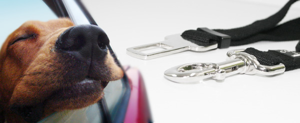 dog seat belt clip pet collars Treats a la Bark